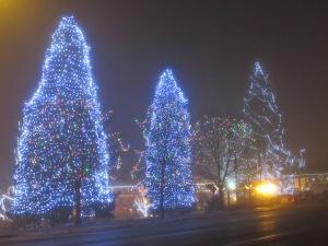 Leavenworth trees